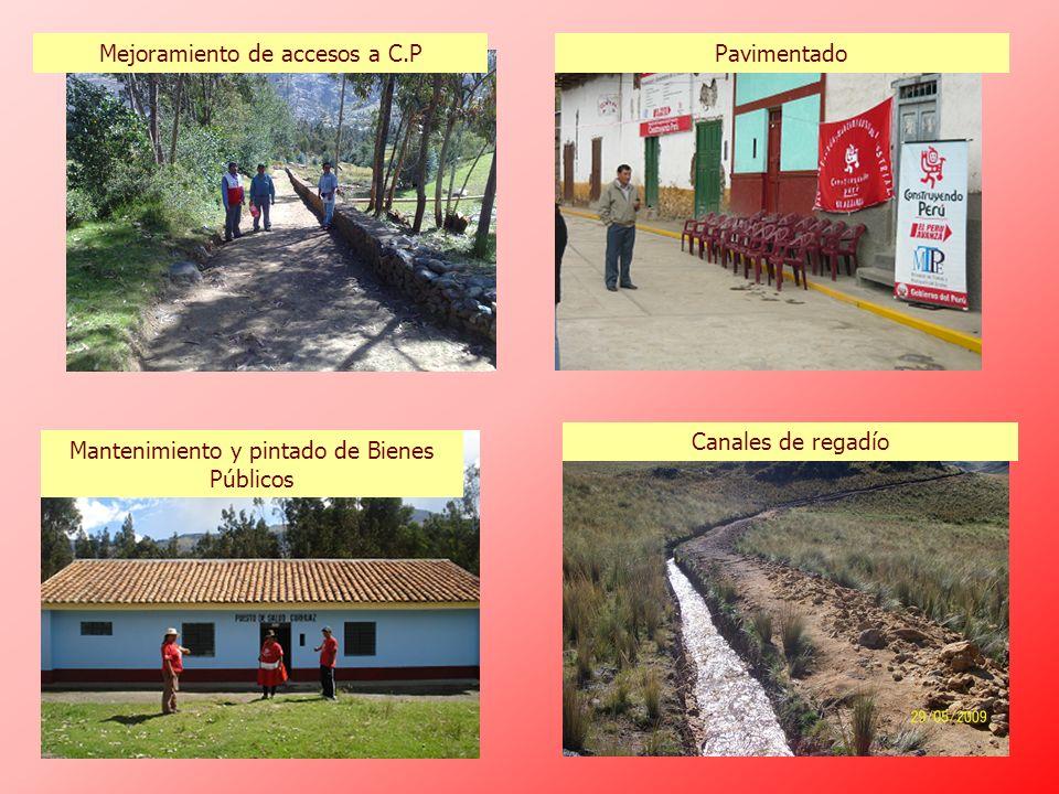 Mejoramiento de accesos a C.P Pavimentado