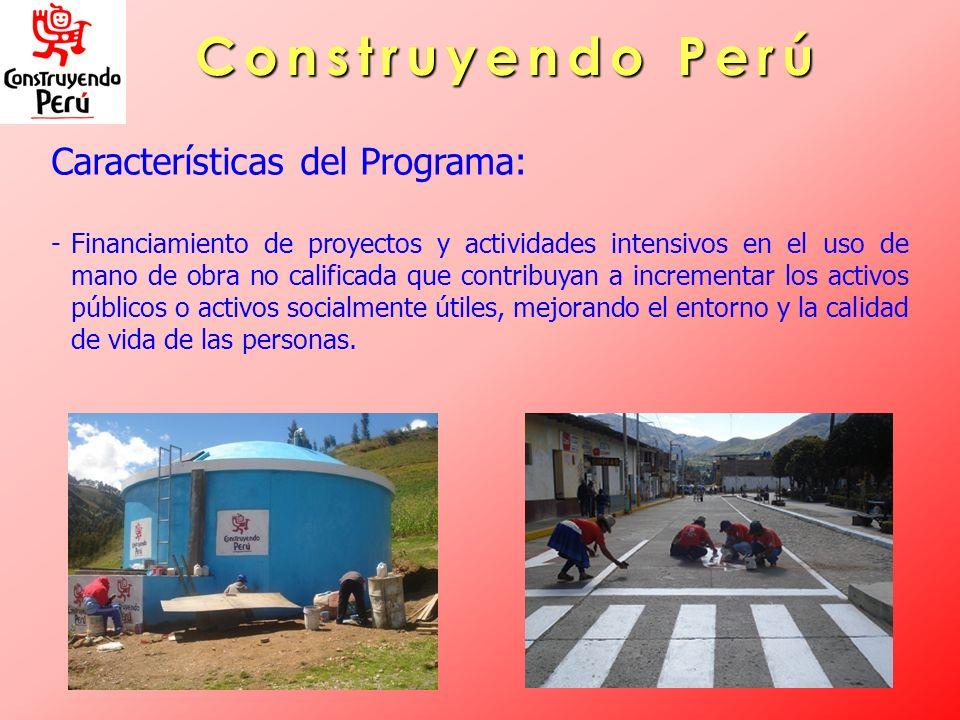 Construyendo Perú Características del Programa: