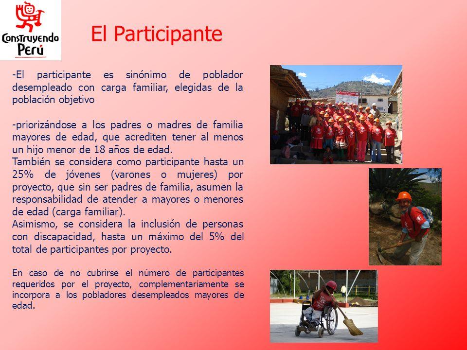 El Participante El participante es sinónimo de poblador desempleado con carga familiar, elegidas de la población objetivo.
