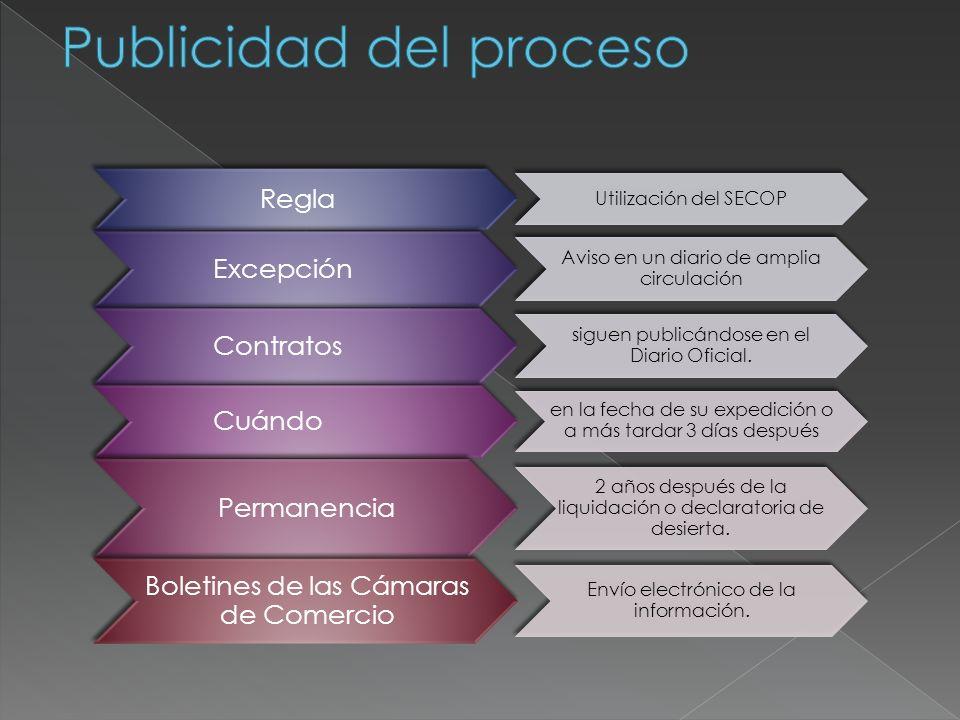 Publicidad del proceso