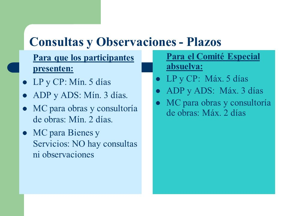 Consultas y Observaciones - Plazos
