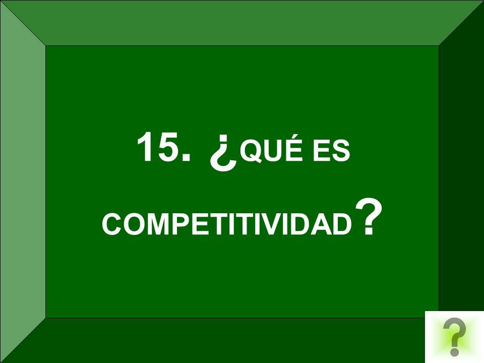15. ¿QUÉ ES COMPETITIVIDAD