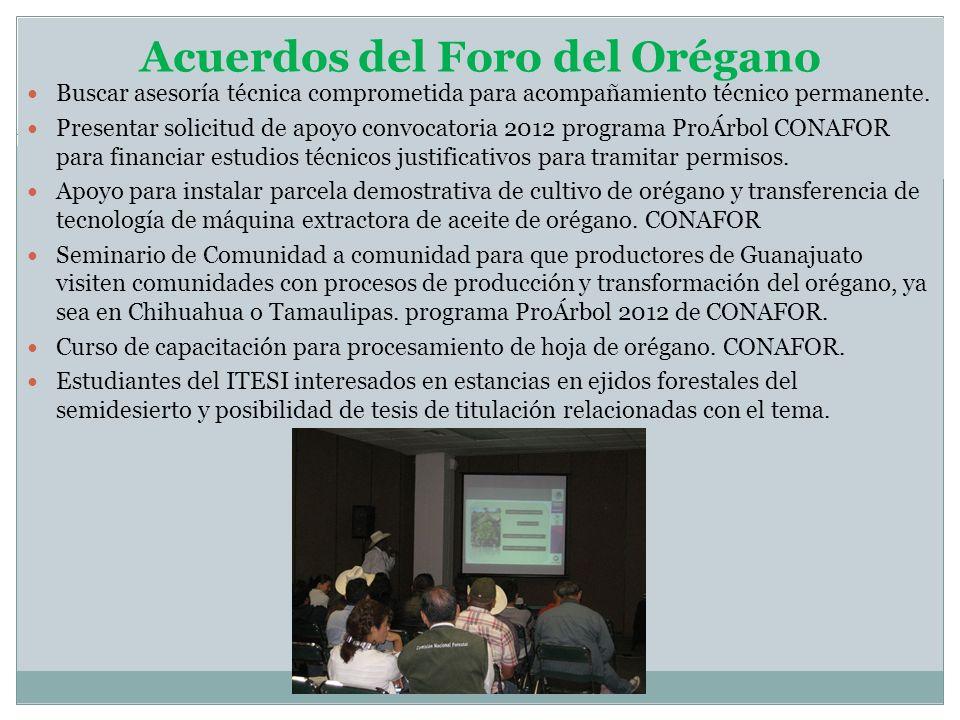 Acuerdos del Foro del Orégano