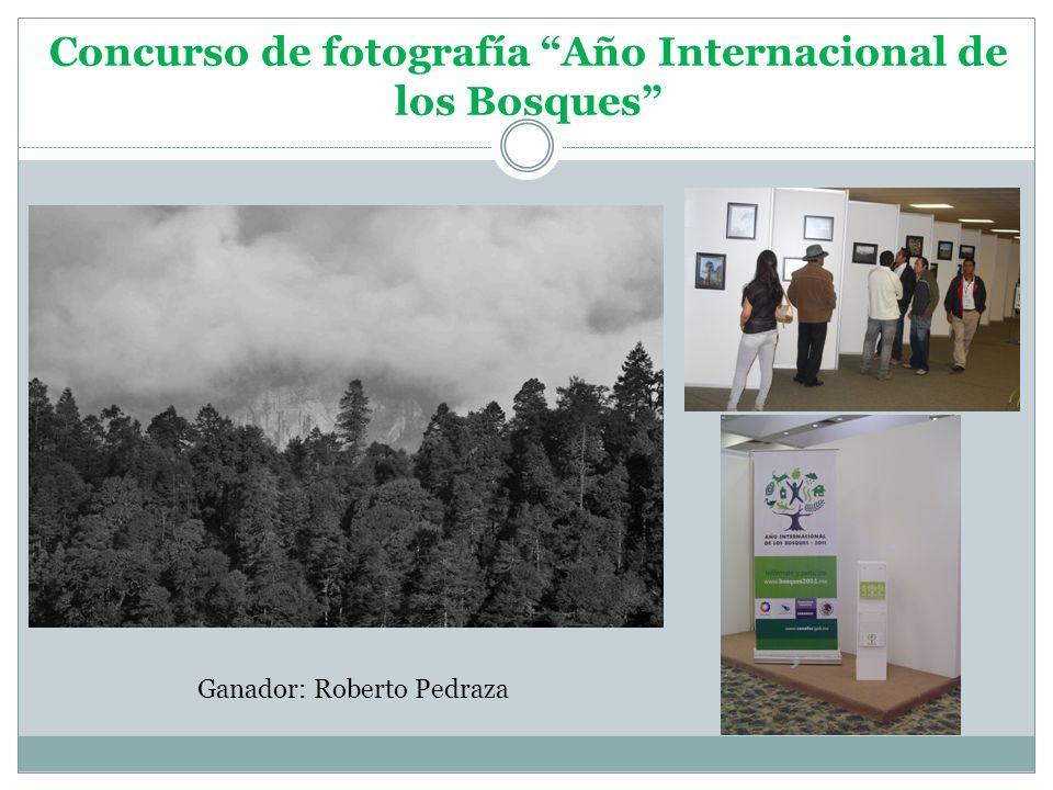 Concurso de fotografía Año Internacional de los Bosques