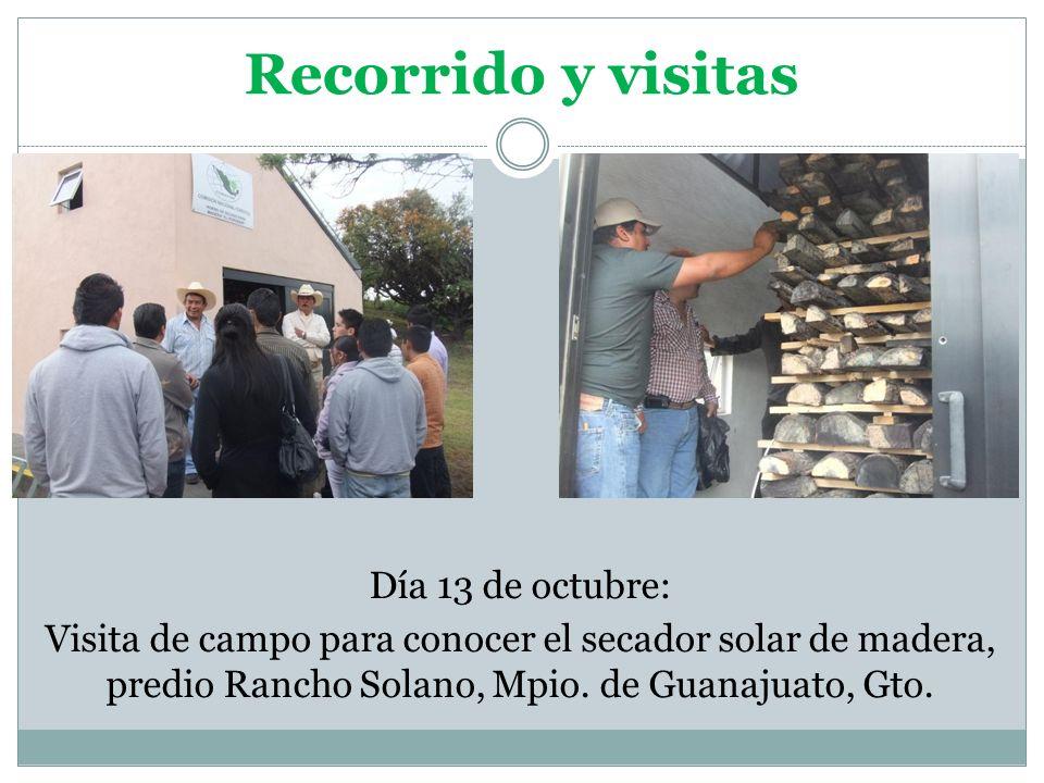 Recorrido y visitas Día 13 de octubre: Visita de campo para conocer el secador solar de madera, predio Rancho Solano, Mpio.