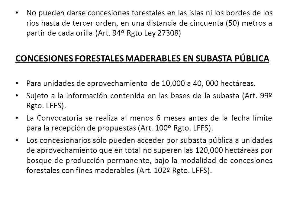 CONCESIONES FORESTALES MADERABLES EN SUBASTA PÚBLICA