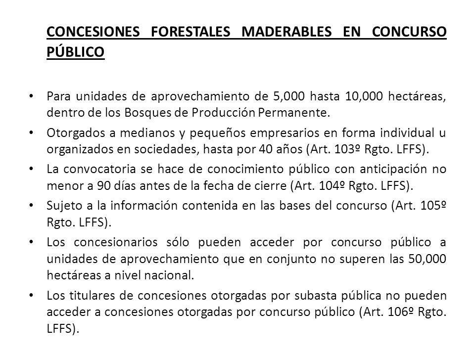 CONCESIONES FORESTALES MADERABLES EN CONCURSO PÚBLICO