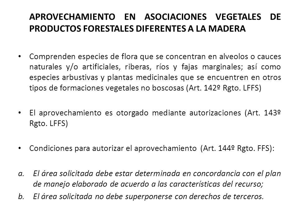 APROVECHAMIENTO EN ASOCIACIONES VEGETALES DE PRODUCTOS FORESTALES DIFERENTES A LA MADERA