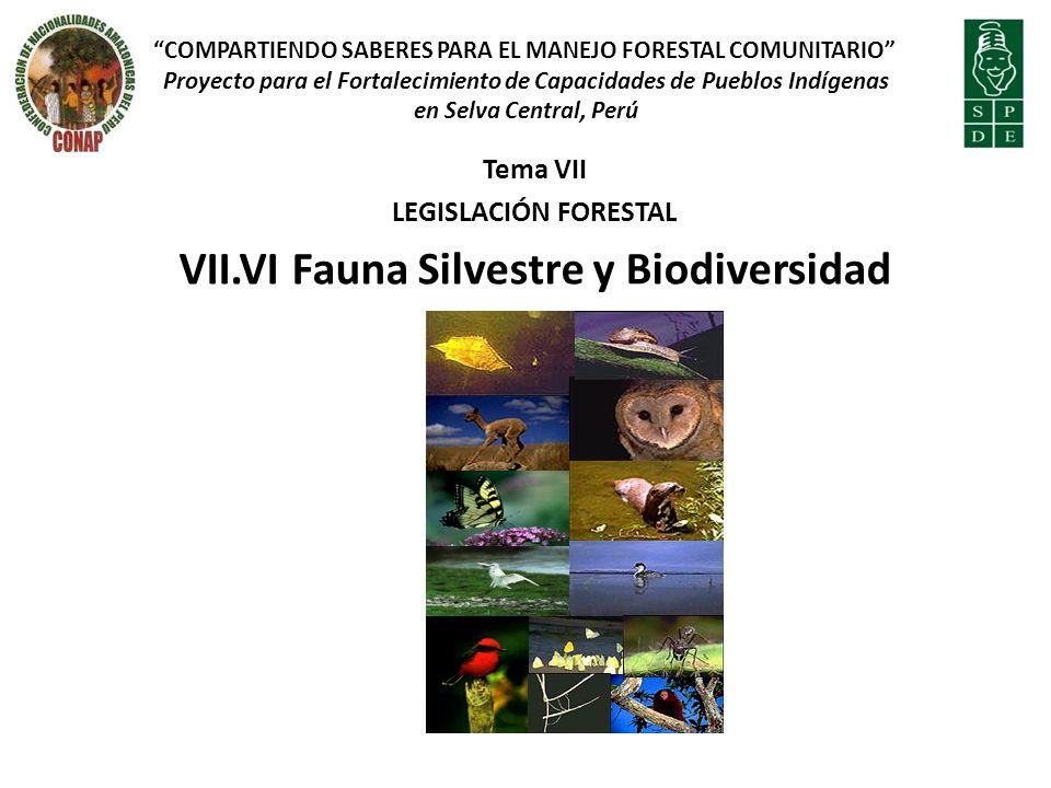 VII.VI Fauna Silvestre y Biodiversidad