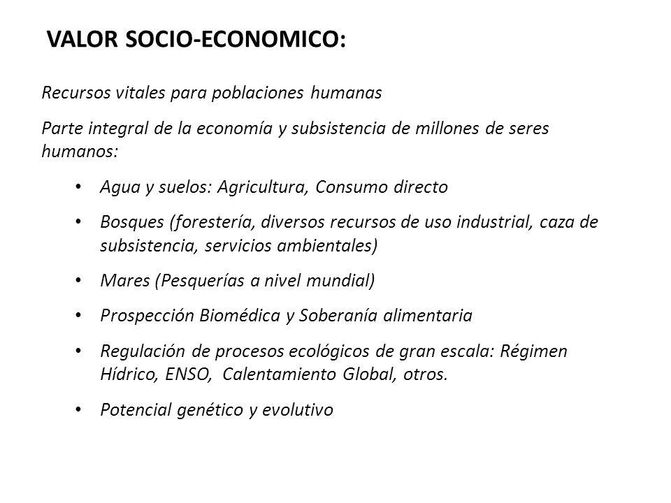 VALOR SOCIO-ECONOMICO: