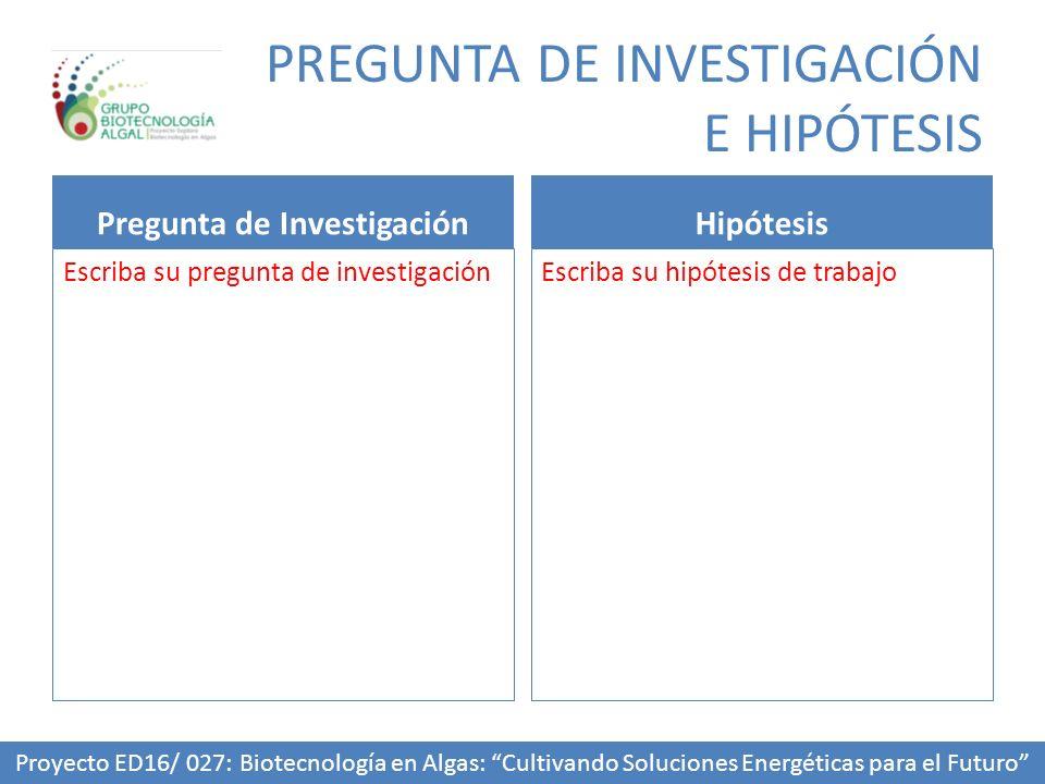 PREGUNTA DE INVESTIGACIÓN E HIPÓTESIS
