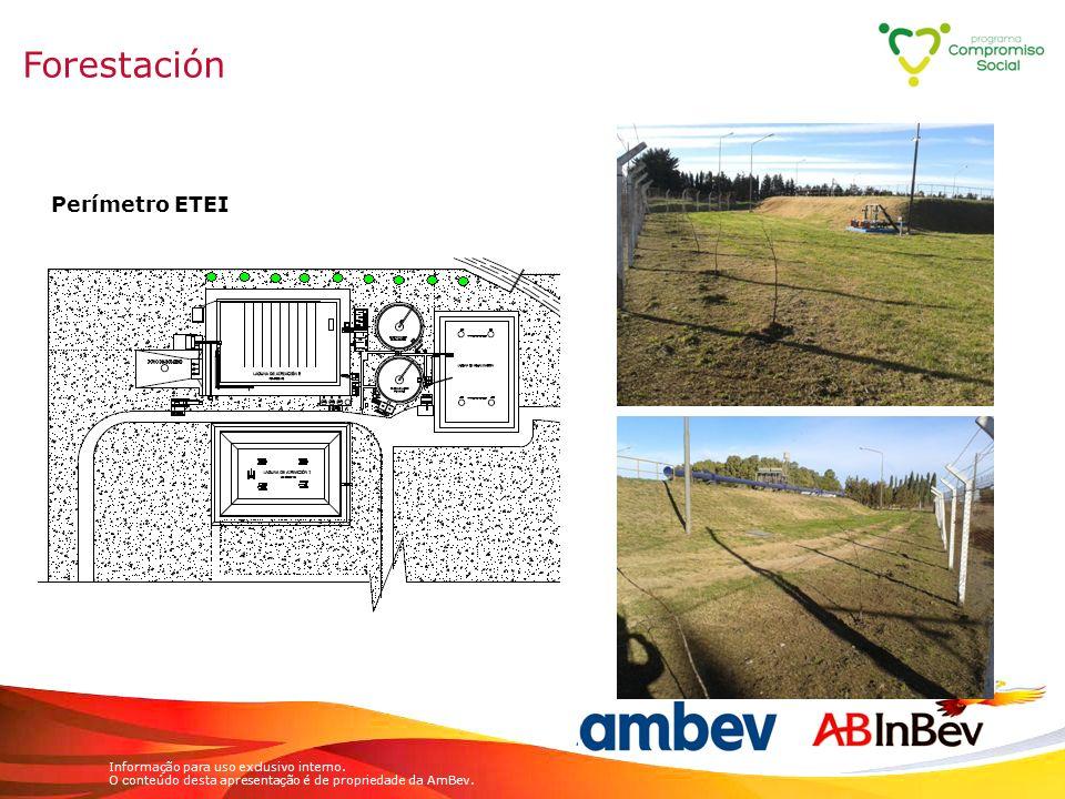 Forestación Perímetro ETEI