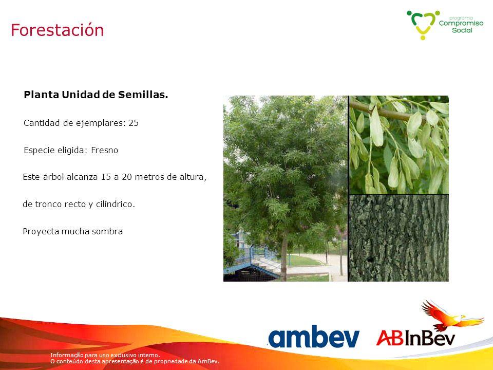 Forestación Planta Unidad de Semillas. Cantidad de ejemplares: 25