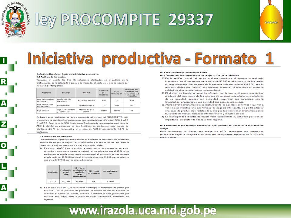 Iniciativa productiva - Formato 1