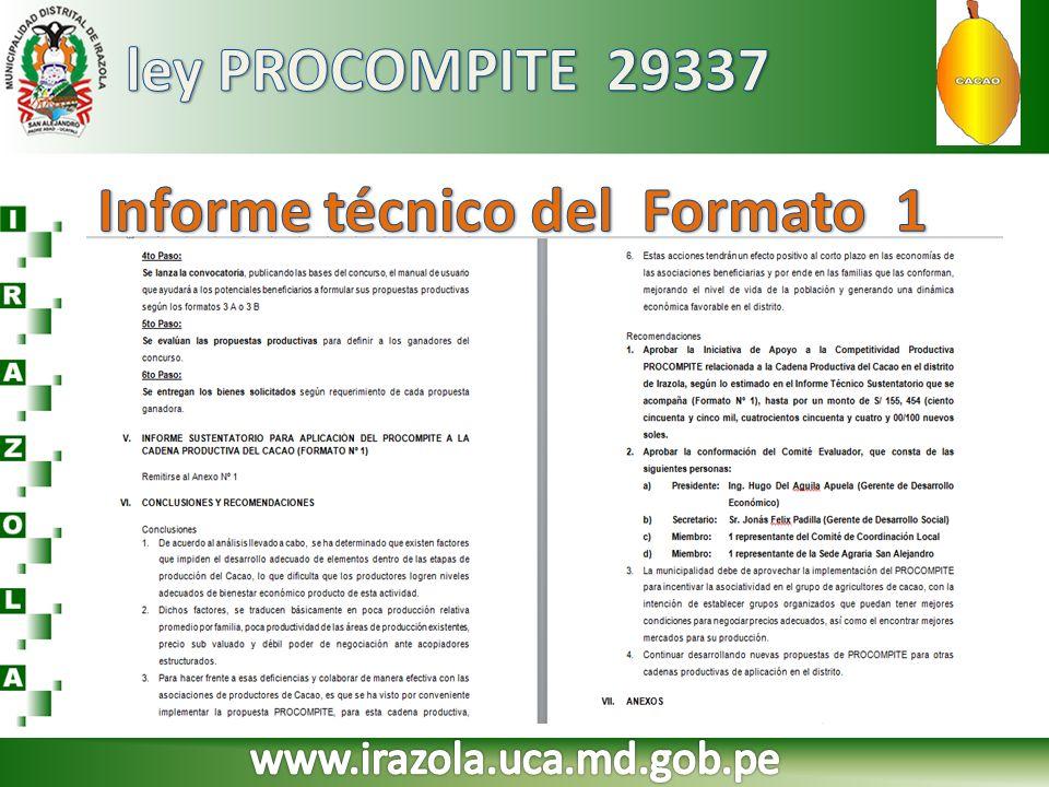 Informe técnico del Formato 1