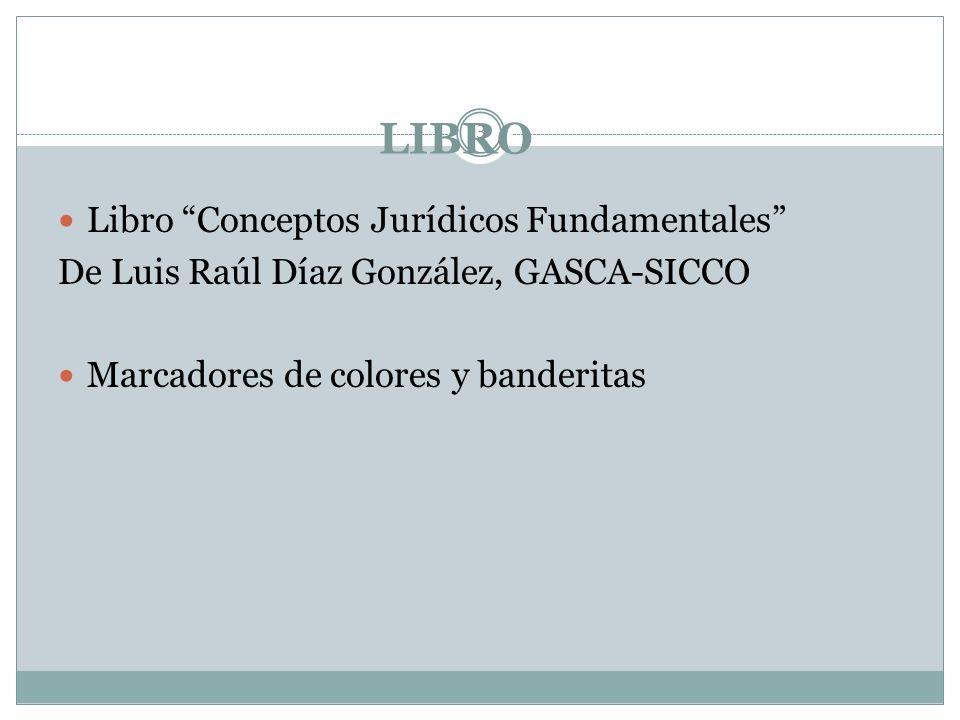 LIBRO Libro Conceptos Jurídicos Fundamentales