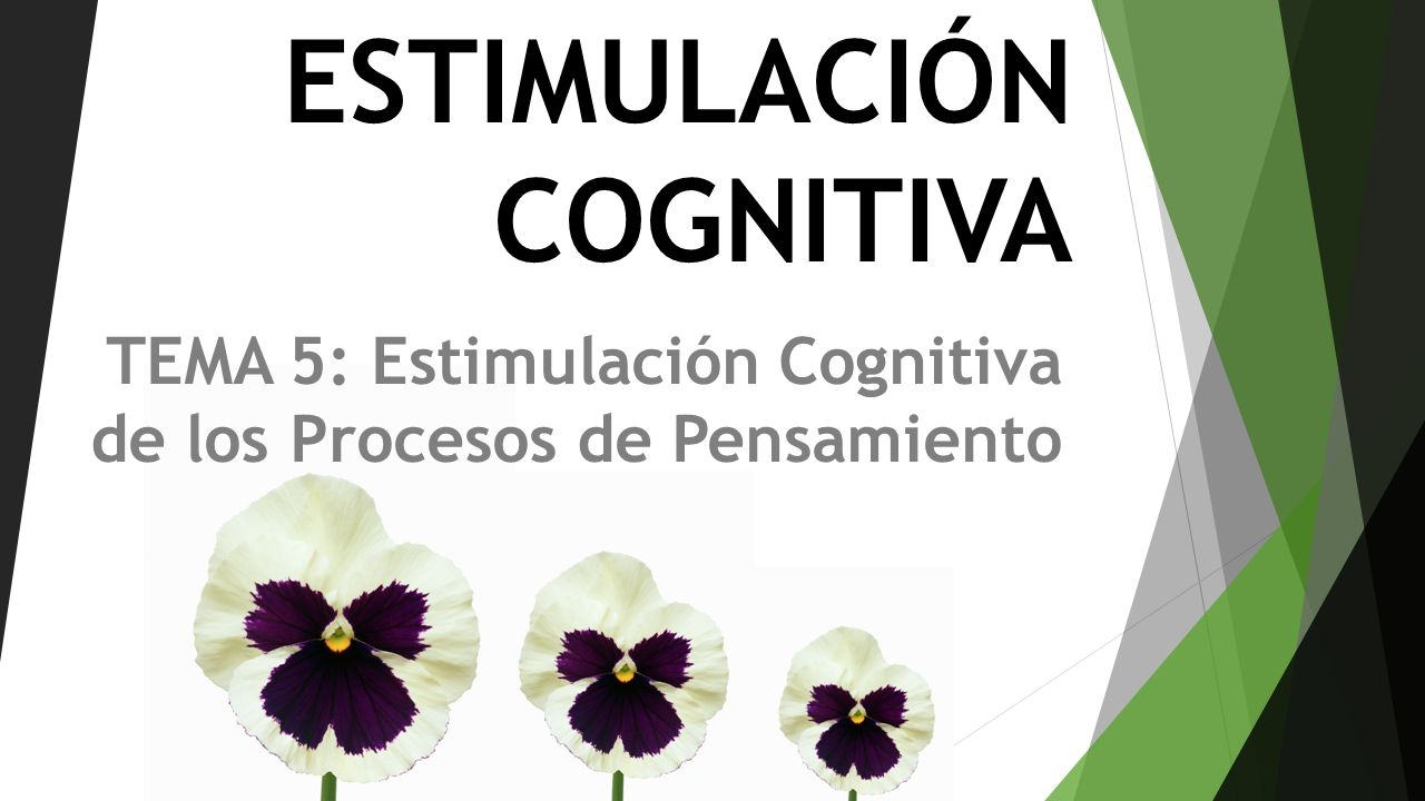 TEMA 5: Estimulación Cognitiva de los Procesos de Pensamiento