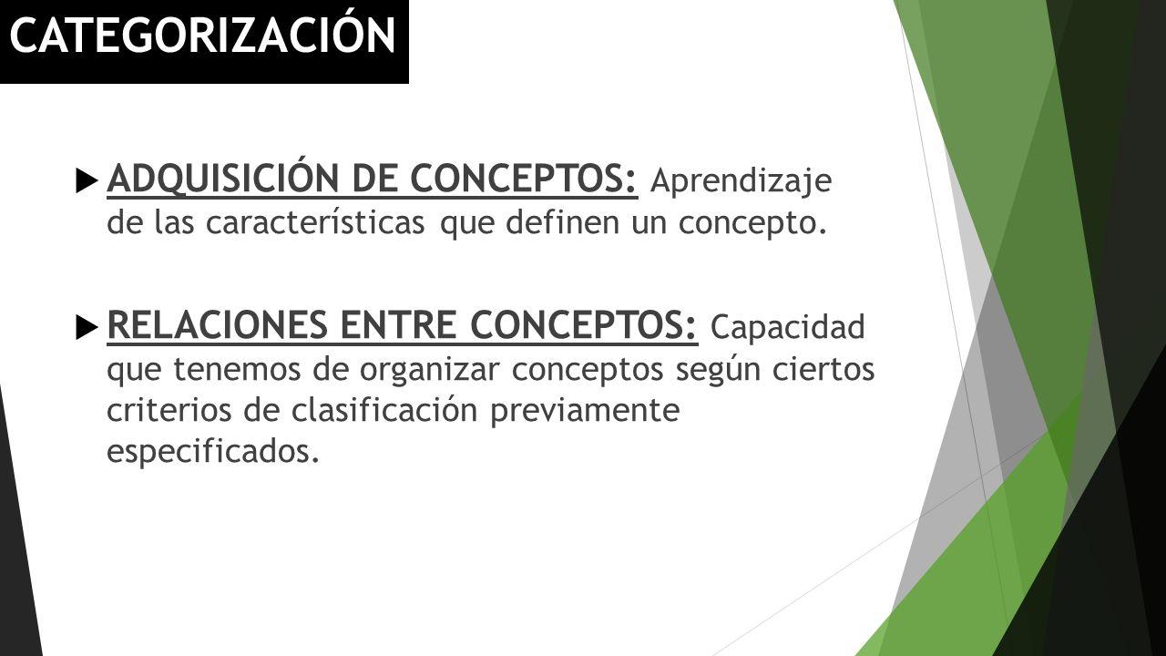 CATEGORIZACIÓN ADQUISICIÓN DE CONCEPTOS: Aprendizaje de las características que definen un concepto.