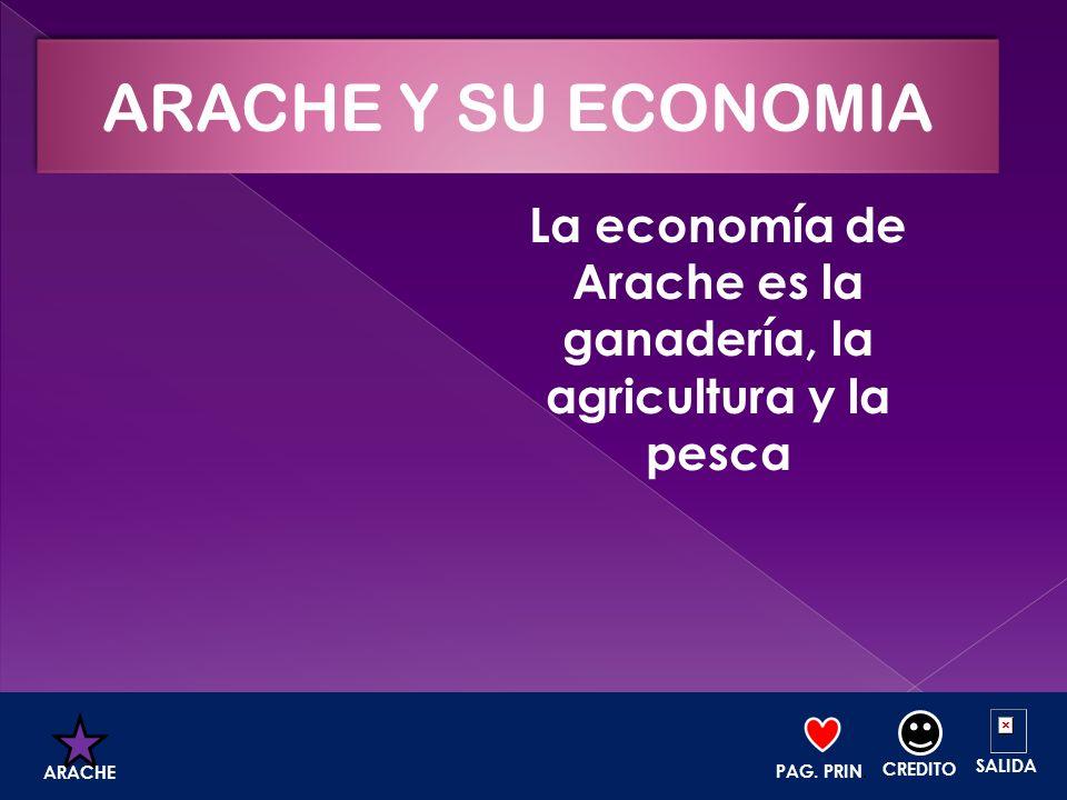 La economía de Arache es la ganadería, la agricultura y la pesca