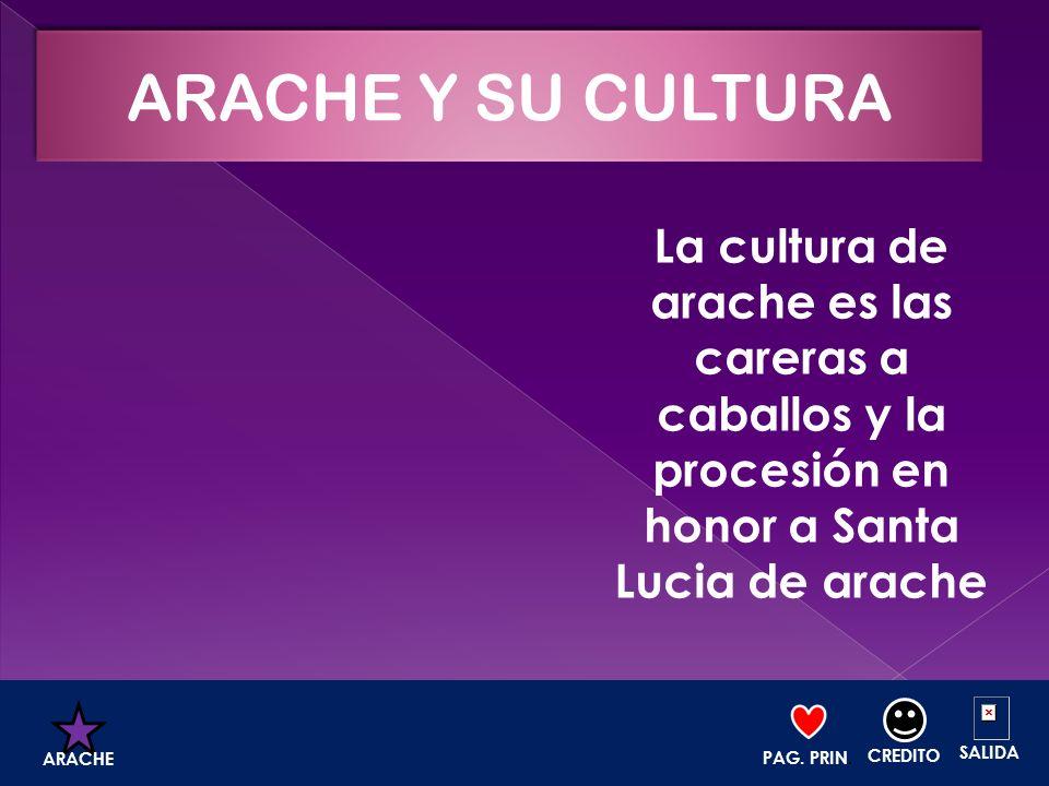 ARACHE Y SU CULTURA La cultura de arache es las careras a caballos y la procesión en honor a Santa Lucia de arache.