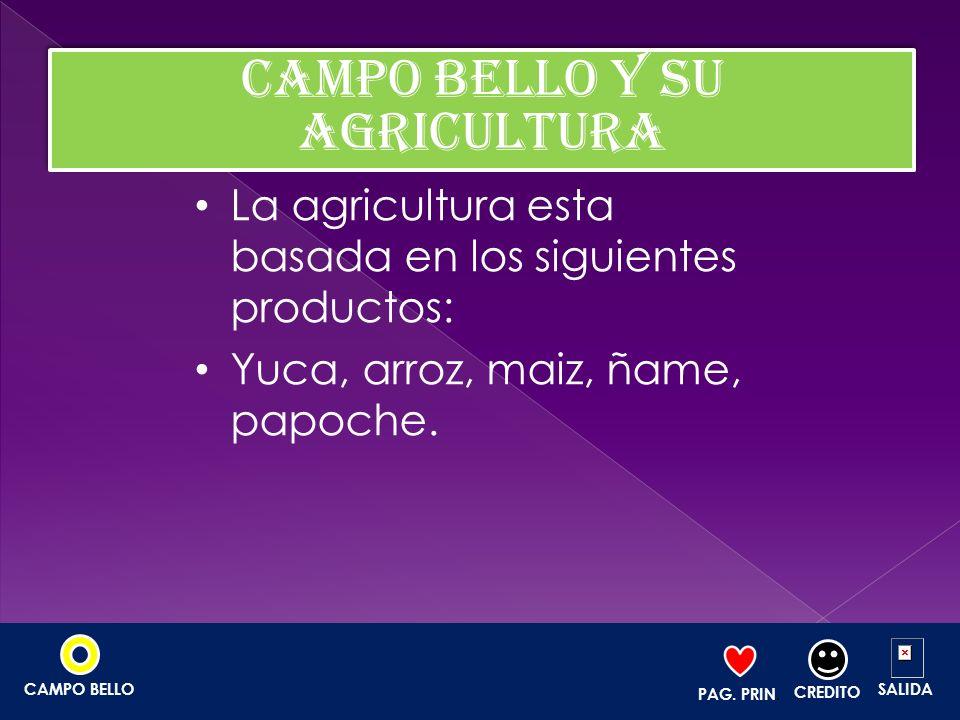 CAMPO BELLO Y SU AGRICULTURA