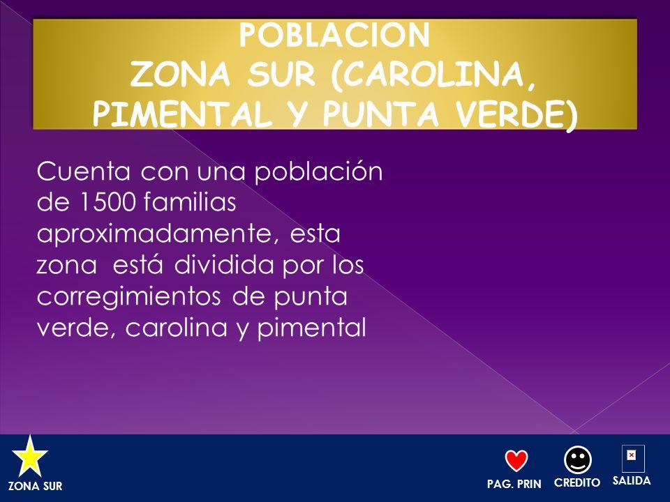 POBLACION ZONA SUR (CAROLINA, PIMENTAL Y PUNTA VERDE)
