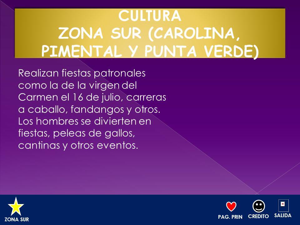 CULTURA ZONA SUR (CAROLINA, PIMENTAL Y PUNTA VERDE)