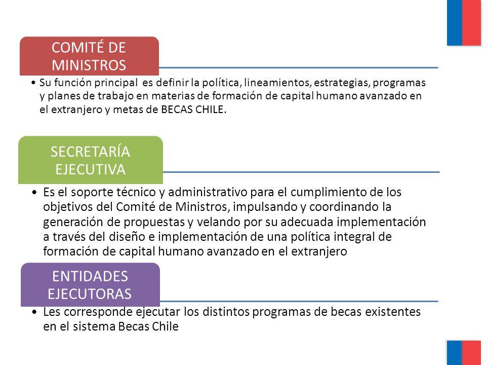 COMITÉ DE MINISTROS SECRETARÍA EJECUTIVA ENTIDADES EJECUTORAS