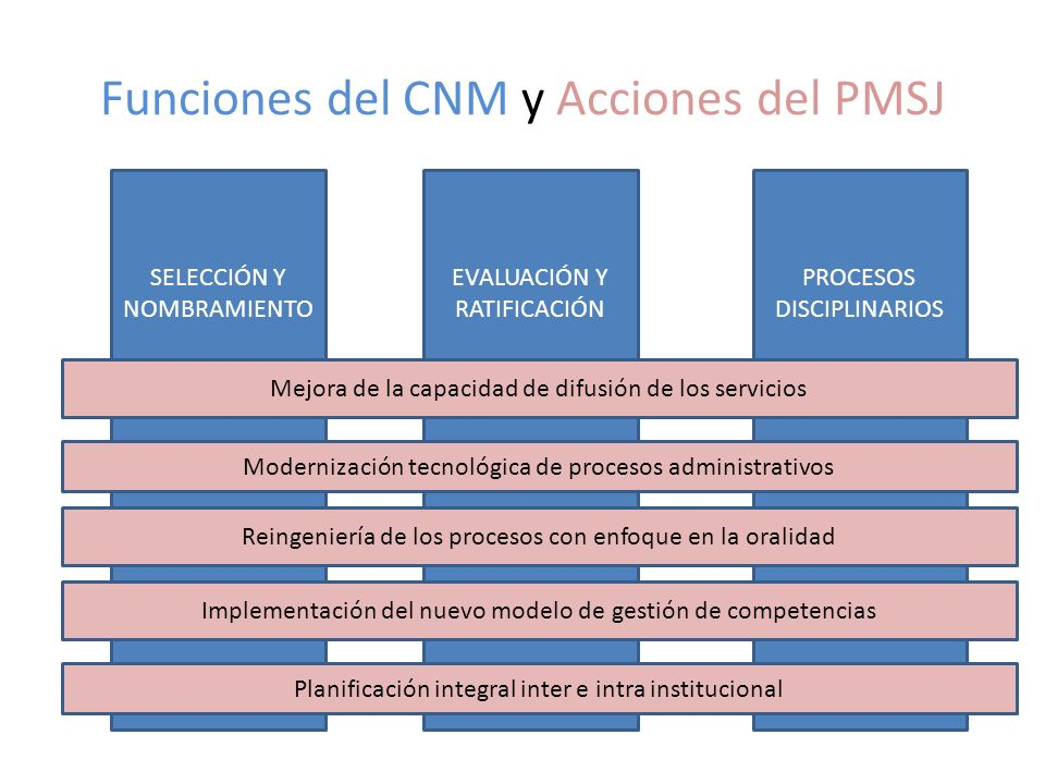 Funciones del CNM y Acciones del PMSJ