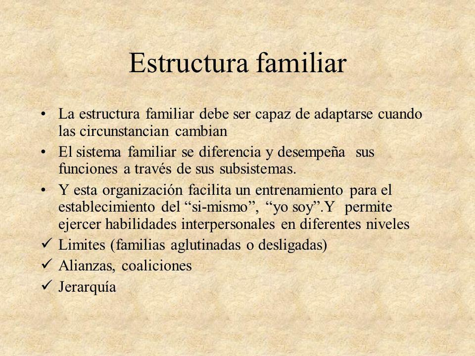 Estructura familiar La estructura familiar debe ser capaz de adaptarse cuando las circunstancian cambian.