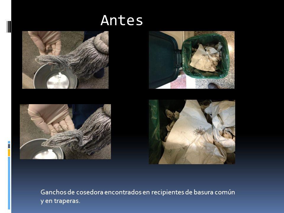 Antes Ganchos de cosedora encontrados en recipientes de basura común y en traperas.