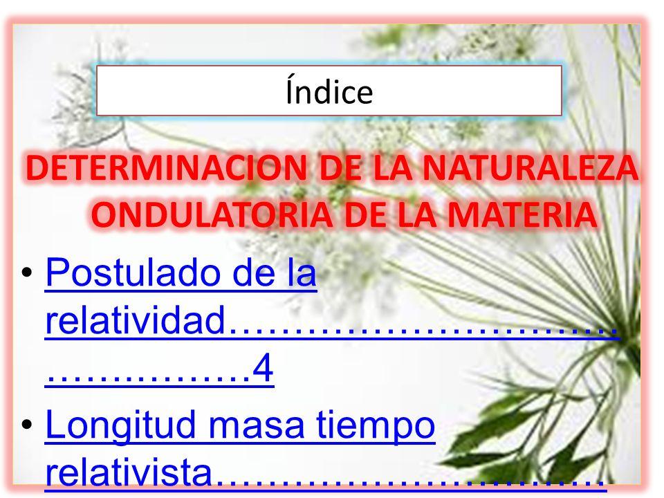 DETERMINACION DE LA NATURALEZA ONDULATORIA DE LA MATERIA
