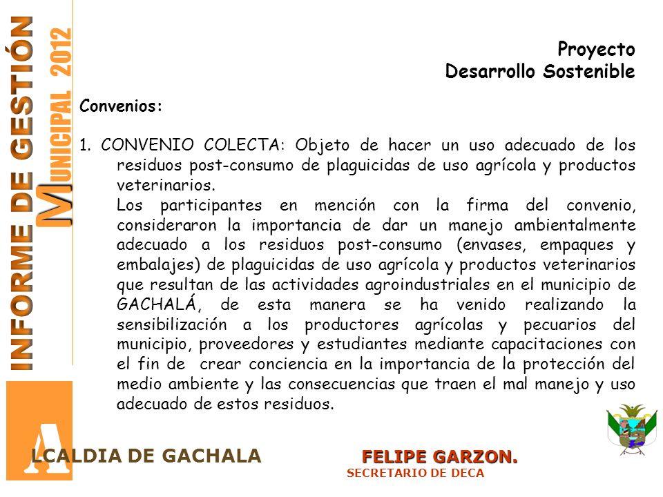 A MUNICIPAL 2012 INFORME DE GESTIÓN Proyecto Desarrollo Sostenible