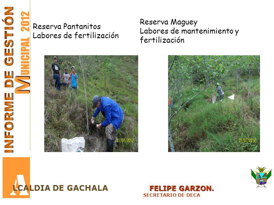 A MUNICIPAL 2012 INFORME DE GESTIÓN Reserva Maguey