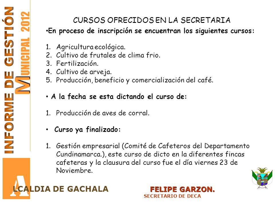 A MUNICIPAL 2012 INFORME DE GESTIÓN CURSOS OFRECIDOS EN LA SECRETARIA
