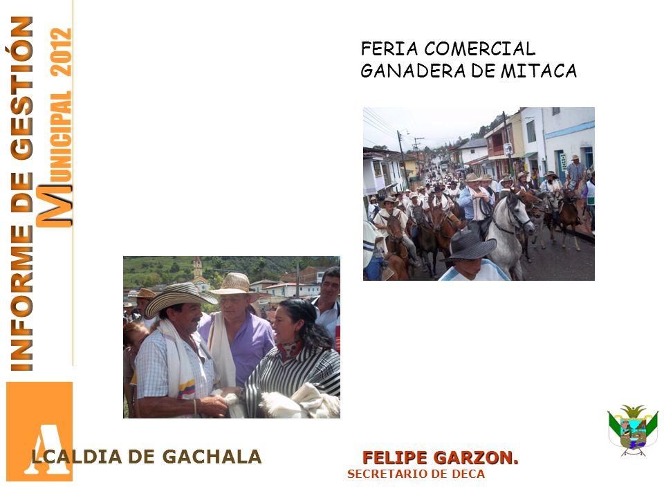A MUNICIPAL 2012 INFORME DE GESTIÓN FERIA COMERCIAL GANADERA DE MITACA
