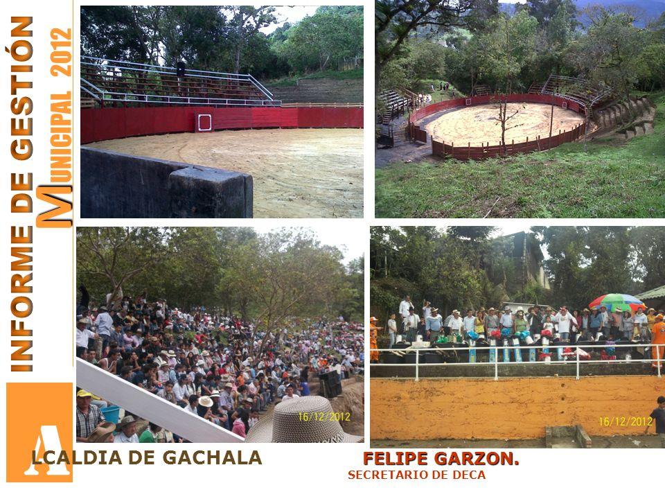 A MUNICIPAL 2012 INFORME DE GESTIÓN LCALDIA DE GACHALA FELIPE GARZON.