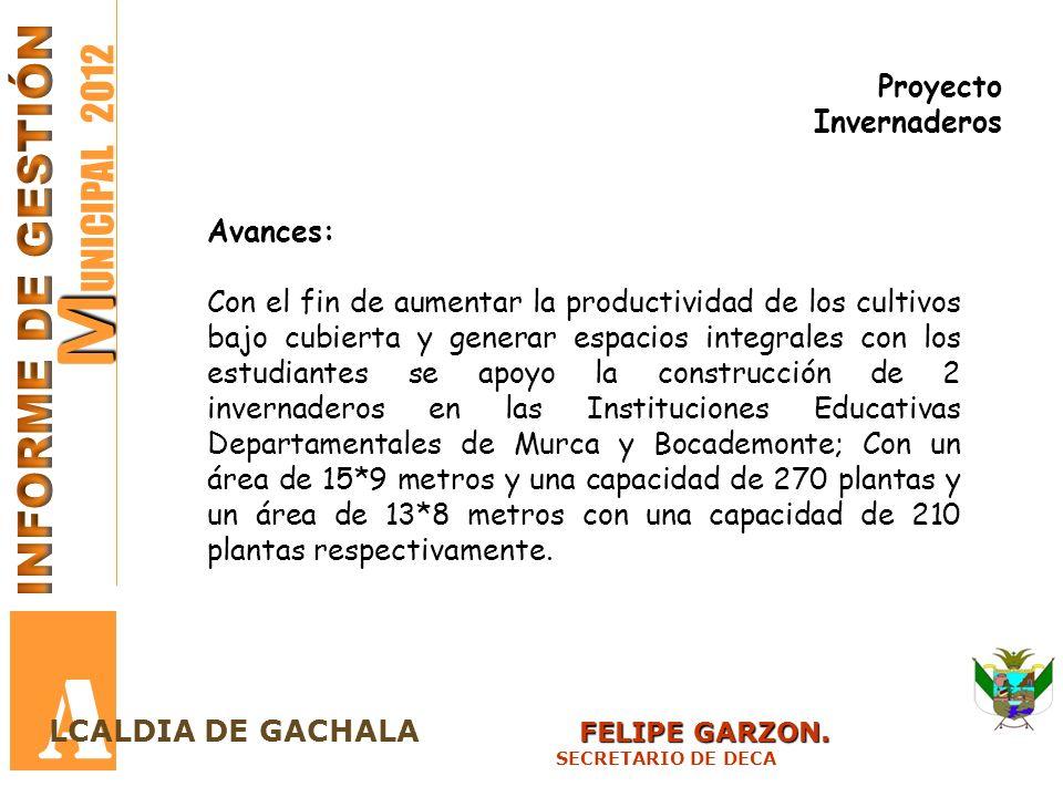 A MUNICIPAL 2012 INFORME DE GESTIÓN Proyecto Invernaderos Avances: