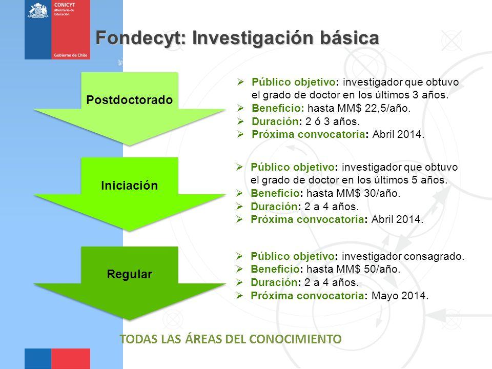 Fondecyt: Investigación básica