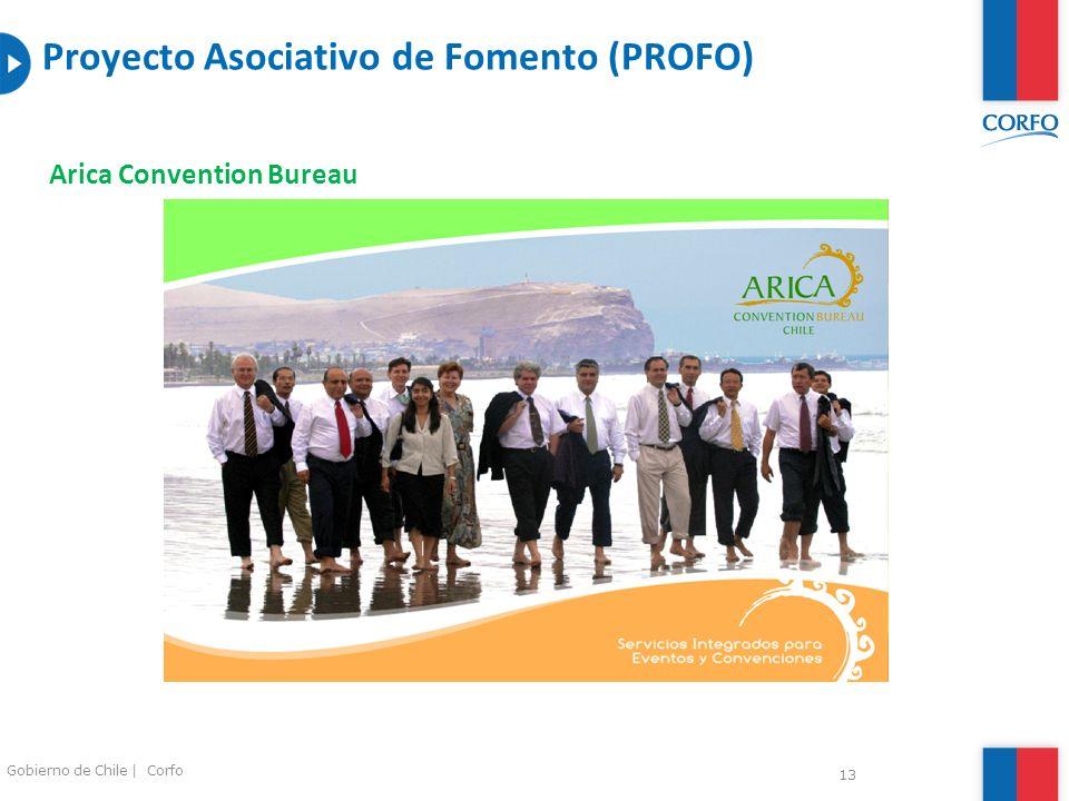 Proyecto Asociativo de Fomento (PROFO)