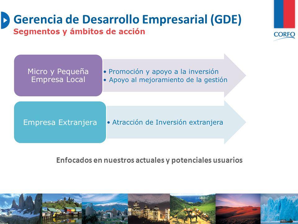 Gerencia de Desarrollo Empresarial (GDE) Segmentos y ámbitos de acción