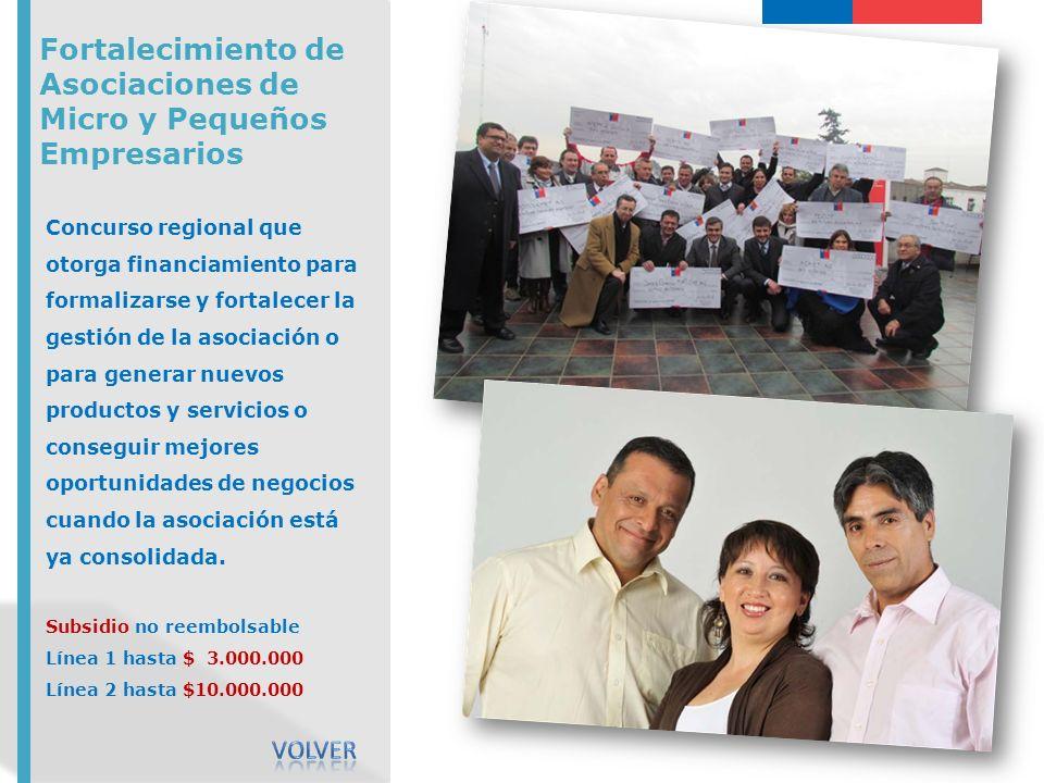 Fortalecimiento de Asociaciones de Micro y Pequeños Empresarios