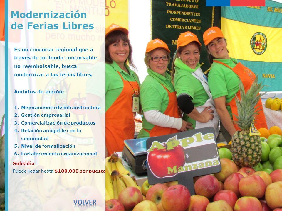 Modernización de Ferias Libres