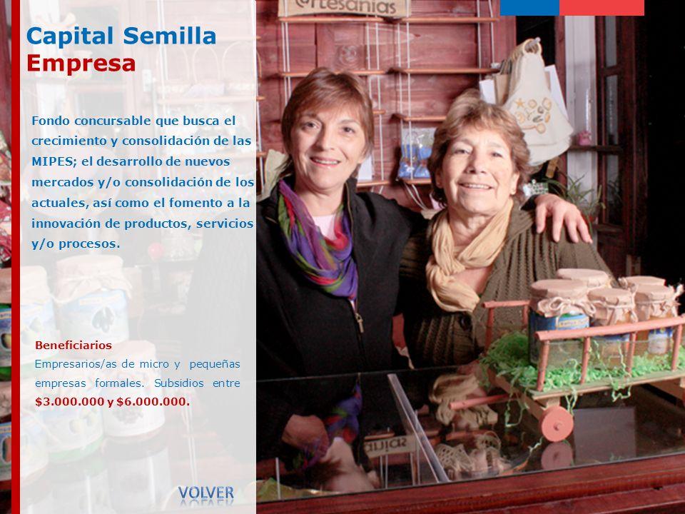 Capital Semilla Empresa Volver