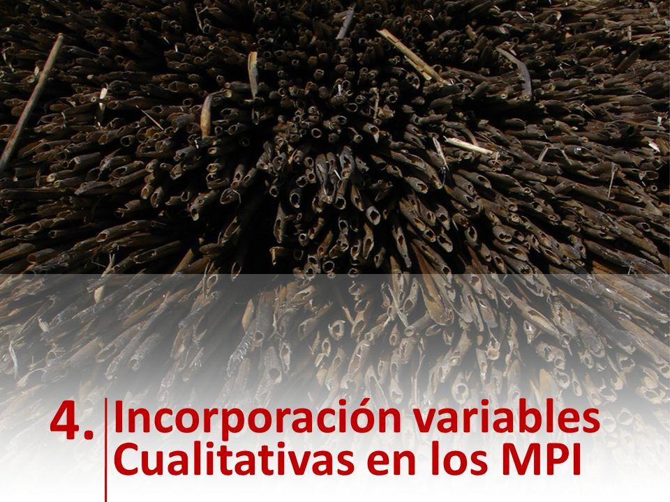 NOTAS: 4. Incorporación variables Cualitativas en los MPI
