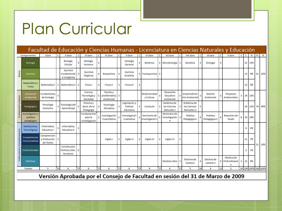 Plan Curricular