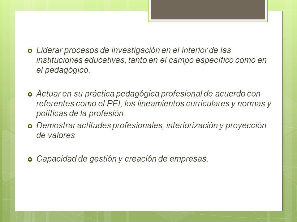 Liderar procesos de investigación en el interior de las instituciones educativas, tanto en el campo específico como en el pedagógico.