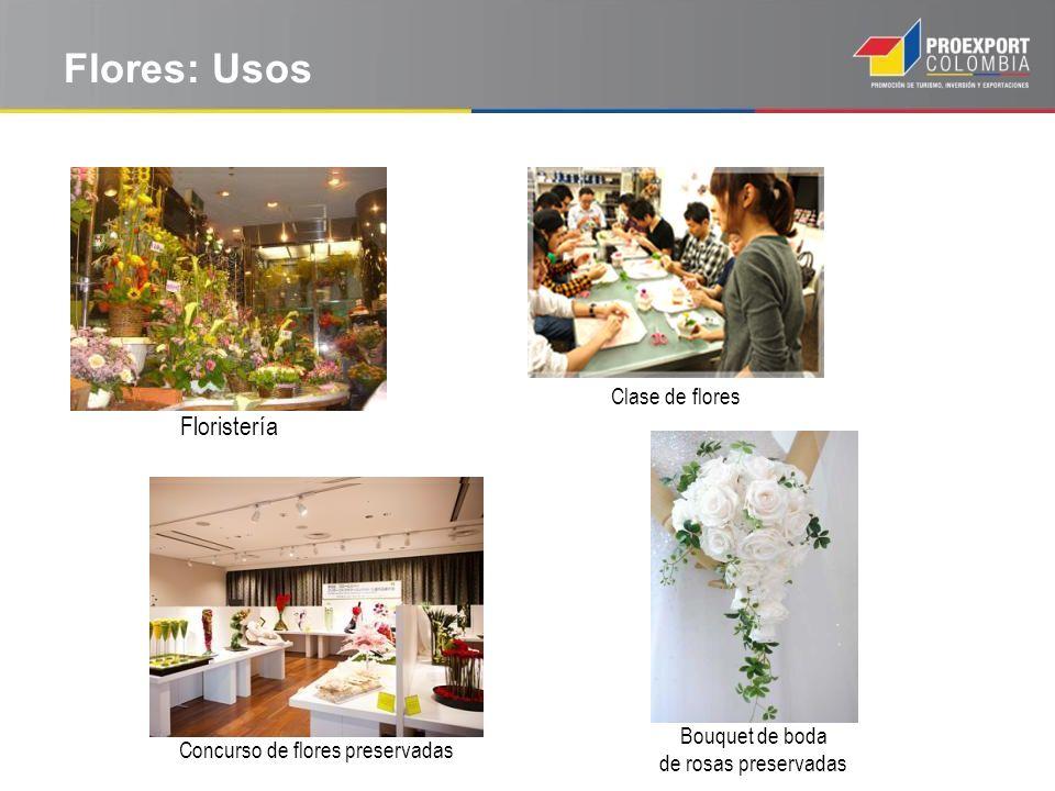 Concurso de flores preservadas