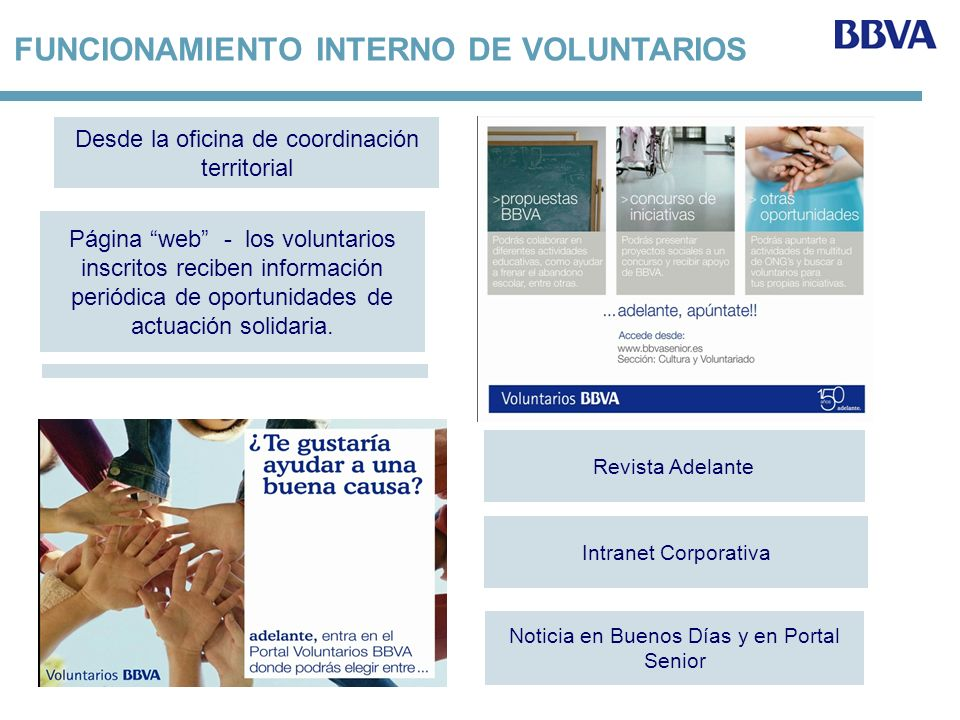 FUNCIONAMIENTO INTERNO DE VOLUNTARIOS