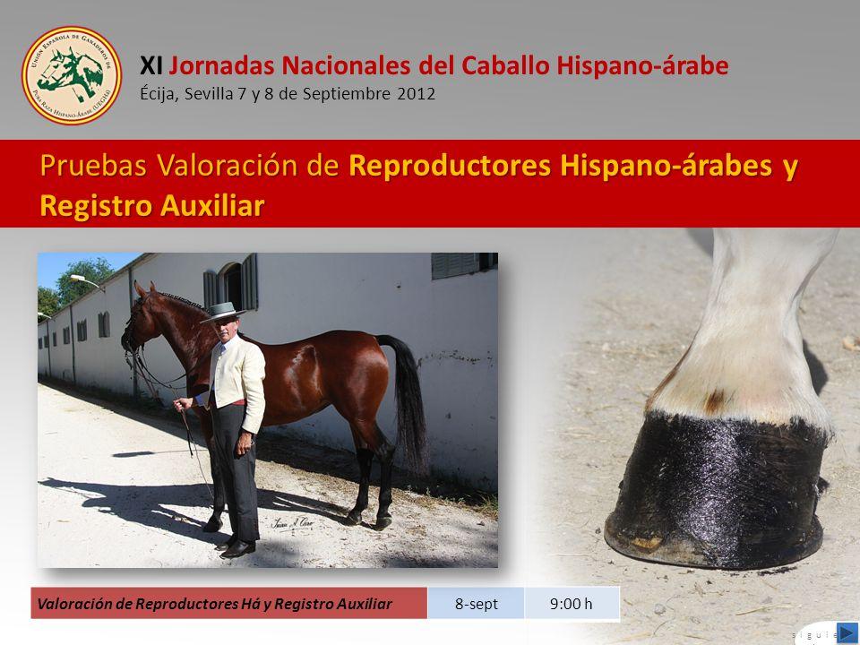 Pruebas Valoración de Reproductores Hispano-árabes y Registro Auxiliar